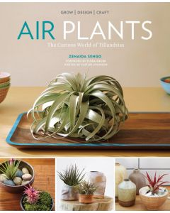 Air Plants, The Curious World of Tillandsias